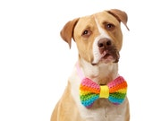 The Pastel RainBow: A Soft Multi-Colored Dog Bow Tie (in Pink, Orange, Yellow, Light Green, Aqua Blue and Lavender)