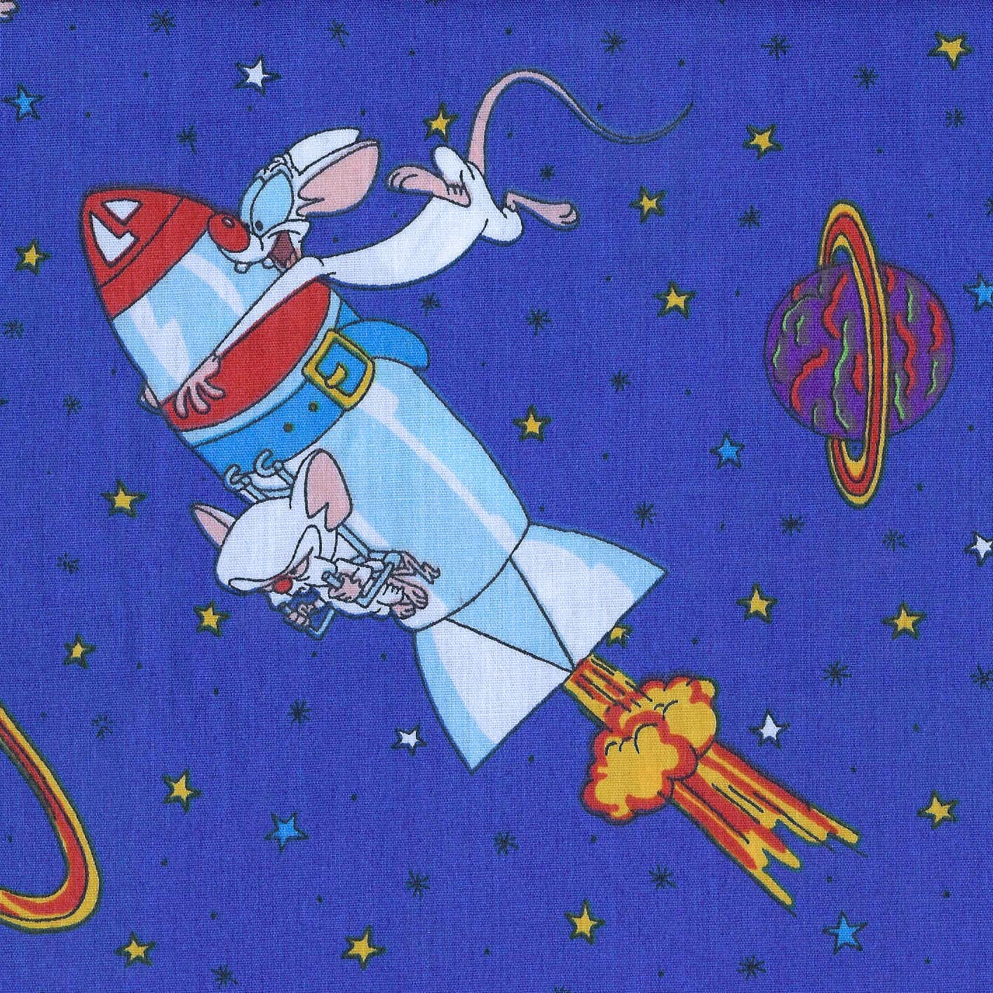 Vintage Cartoon Fabric Pinky And The Brain Animaniacs On Dark