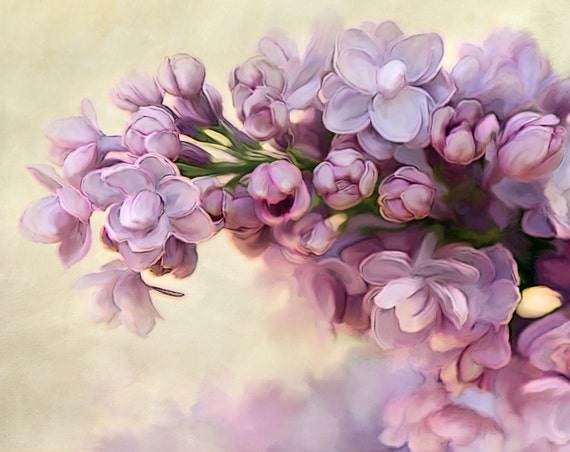 Photograph, Floral Nature Photograhy, Lilac Photo, Lilac Print, Flower Print, Flower Photo, Home Decor