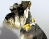 Grey Poupon - Plaid - Bowtie Adjustable Dog Collar