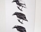 "Crow Study Print, 16.5"" x 11.7"""