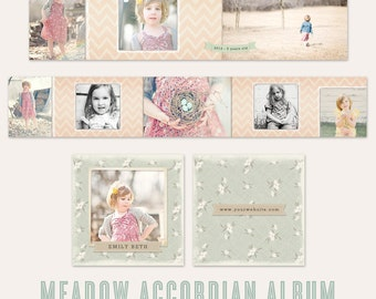 Meadow 3x3 Accordian Album - Miller's Lab & WHCC files - for professional photographers
