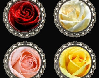 Roses,Fridge,Office,Kitchen Magnets Red White Peach Yellow Set of 4
