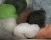 Needle Felting Starter Kit - Woodland Wool Sampler