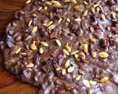 Chocolate Bark Artisan Spicy Pumpkin Seeds Pepitas Dried Cherries Candy 8 oz.