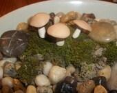miniature set of 3 fairy garden mushrooms