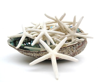 STARFISH, 50 pcs. 3-4 in. White Starfish, BULK, Finger Starfish, Pencil Starfish, (wholesale) crafts, Wedding Supplies, Natural Starfish