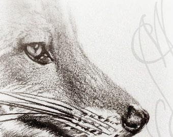 "Martinefa's original drawing presented in hand personalised frame - Fox ""Renard"""