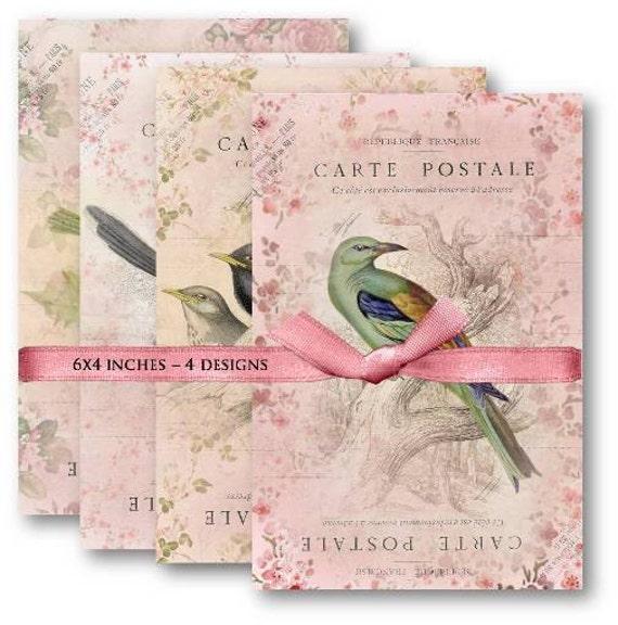 Digital Collage Sheet Download - Bird Carte Postale -  461  - Digital Paper - Instant Download Printables