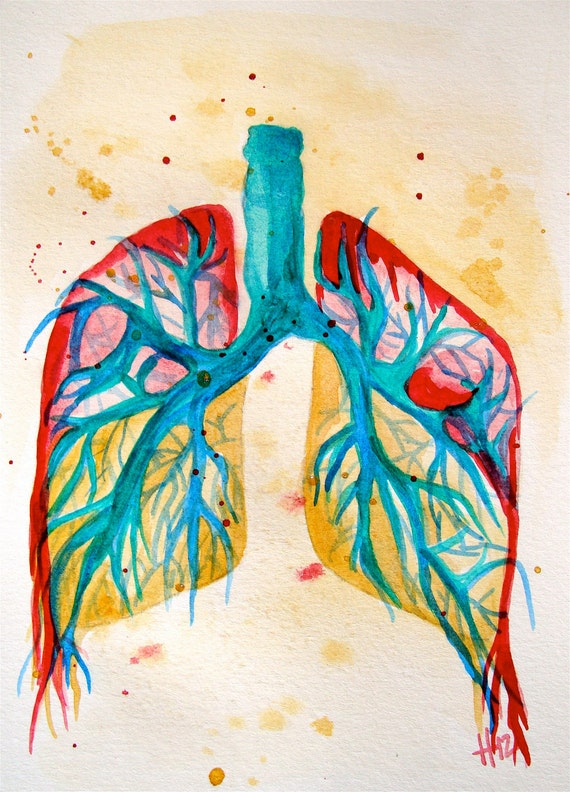 Lungs anatomy colorful, original watercolor painting 5x7