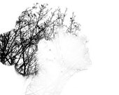 Trees silhouette - Trees Inside of me Branches trees silhouette wall decor nature botanical portrait black and white Photography  8x12