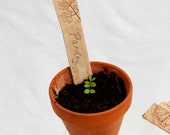 Ceramic Plant Markers - reusable rustic garden accessory,ideal gardener's gift impressed with real leaves and flowers