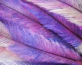 10 Tie Dye Feather Extensions CRUELTY FREE Lavender Purple Pink Silver Emu Feathers for hair FTHR04