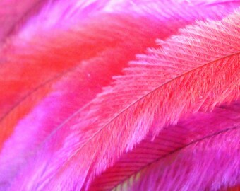 10 Tie Dye Hair Feather Extensions CRUELTY FREE with free beads Hot Pink and Orange Sherbet Emu Feathers for hair FTHR07