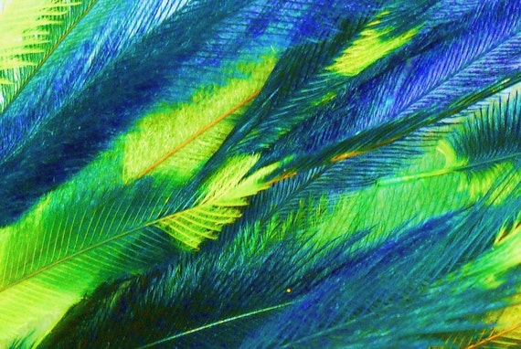 10 Tie Dye Feather Extensions CRUELTY FREE Green and Deep Blue Emu Tye Dye Feathers for hair FTHR08