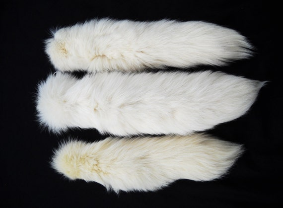 """15"""" to 17"""" White Arctic Fox Tail Real Fur Totem Keychain Key Ring Ornament for Purse, Anime Costume, Etc"""