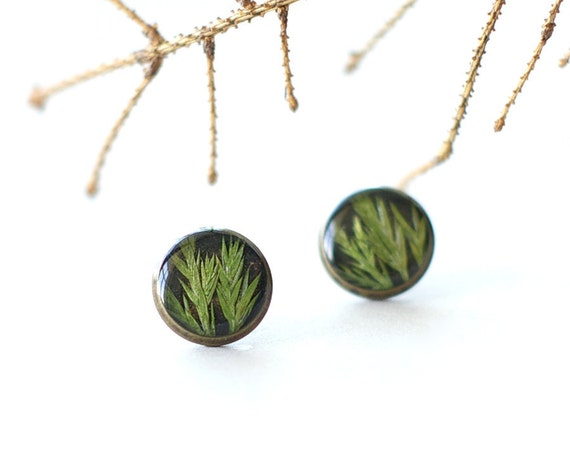 Juniper Stud Earrings - real plants jewelry - lovely gift for her- Juniper tree earrings Christmas magic gift  - Juniperus communi