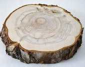 RUSTIC TREE SLICE, Wood Slab, Outdoor Wedding, Cake, Cupcake Stand, Centerpiece, Rustic Riser, Photography Prop
