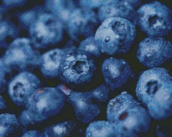 Blueberries Cross Stitch Pattern 001