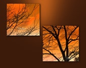 Orange skies-  Fine art photographic print set, orange, dark, trees, branches, home decor, abstract.