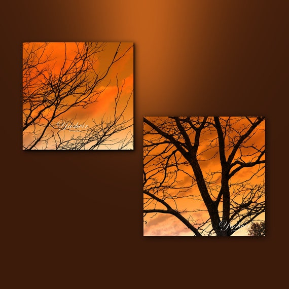 Orange skies-  Fine art photographic print set, orange, dark, trees, branches, home decor, abstract.