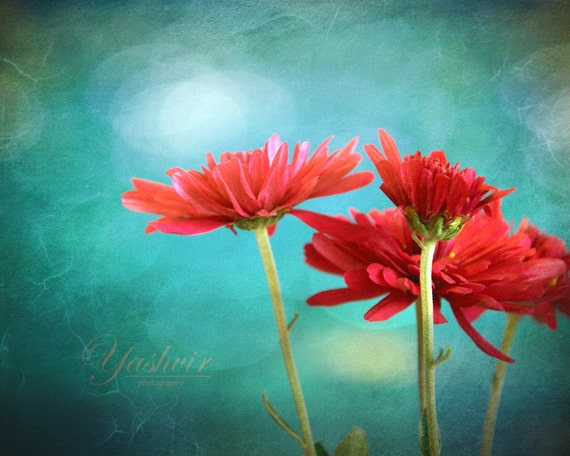 Flower parade- Photography print of flowers. Blue teal background. Enchanted and romantic. Spring summer home decor.