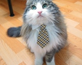 Pet Dog Cat Collar ACCESSORY Necktie