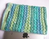iPad Bag - Crochet - Knit Project Bag - Lunch Bag - Pouch - PDF Crochet Pattern only