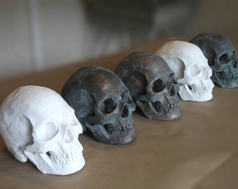 Life-size HUMAN SKULL SCULPTURE, custom finish: special order