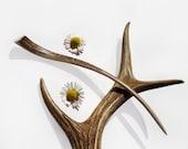 Hair Stick Hair Pin Deer Antler Tribal MariyaArts