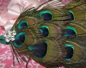 Baby Peacock Headband Feather and Rhinestone Embellishment Prissy Little Peacock