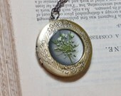 reserved for Michelle pressed flower locket jewelry real botanical pendant queen annes lace white and green brass resin nature gift