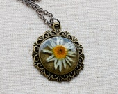 pressed flower necklace resin cream white yellow daisy wildflower set in resin. shabby chic circle filigree pendant for summer. prairie.