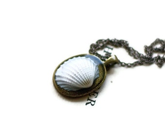 sea shell necklace resin jewelry real ocean seashell nautical pendant green blue brown texture natural nature beach