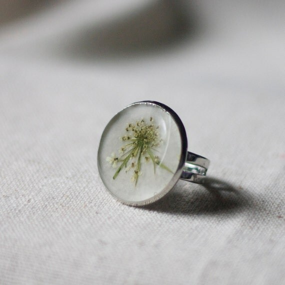 pressed flower ring real pressed botanical queen annes lace adjustable ring  - natural woodland beauty, rustic cottage garden love girly