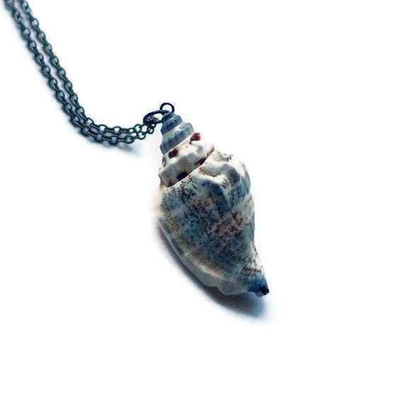 sea shell necklace shell beach jewelry real ocean seashell nautical pendant green blue brown texture natural nature ocean fashion