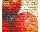 The Apple List - photo art print - 8x11