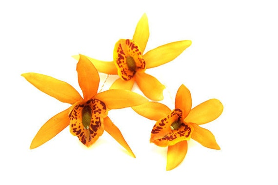 Set of 3 Yellow Orchid hair Pins