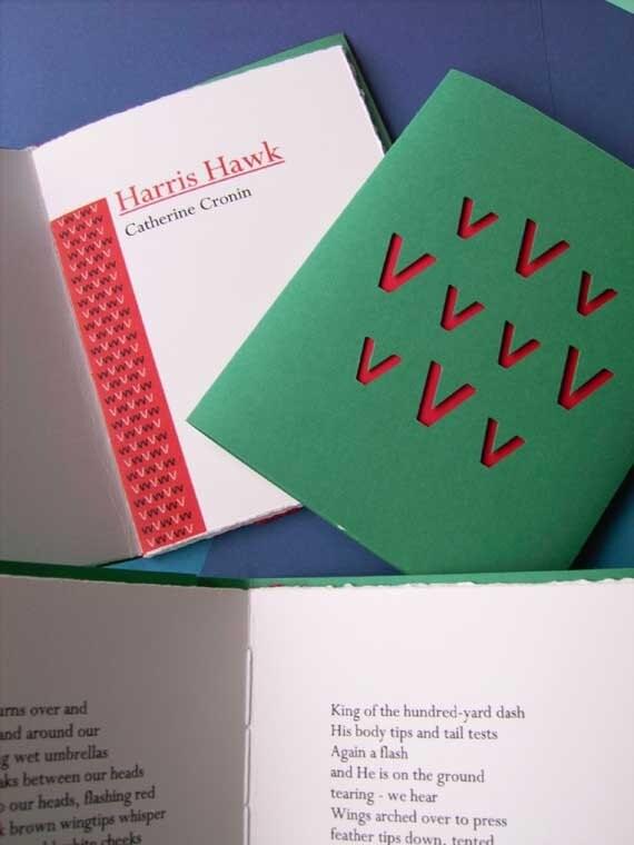 Harris Hawk Artist's Book 2nd Edition of 10