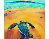 Baby Sea Turtle - Original Sea Turtle PRINT 8 x 10 - By Corina St. Martin