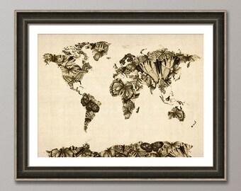 Butterfly Map of the World Map of Butterflies, Art Print (900)