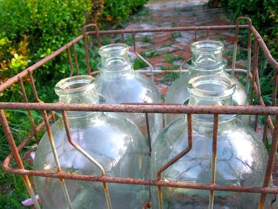 Vintage Milk Jugs and Metal Milk Crate Set of 4 Gallon Jugs, Wedding