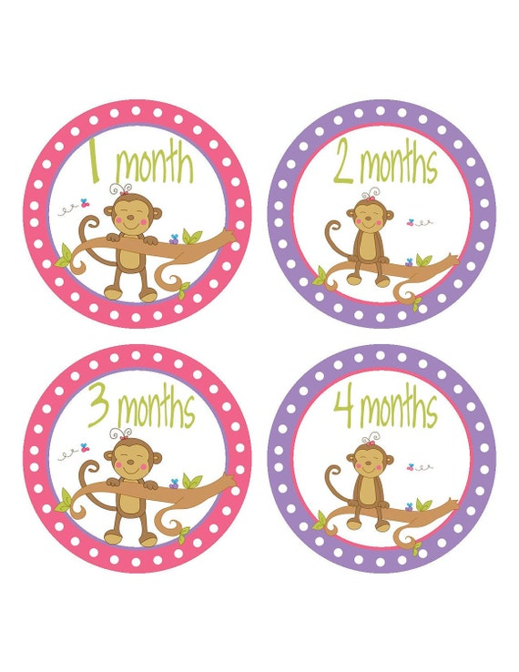 Monthly Stickers - Month Stickers - Photo Prop - Girl Monkeys - 091