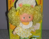 Lemon Meringue with Frappe Frog 1979, Vintage Strawberry Shortcake, Kenner