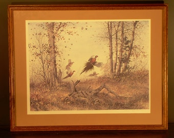Watercolor by David Hagerbaumer signed artist proof of limited edition print of woodland pheasants.
