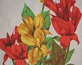 Vintage 1970s Cotton Tea Towel Yellow & Red Iris/Canna Lillies on Pink Background