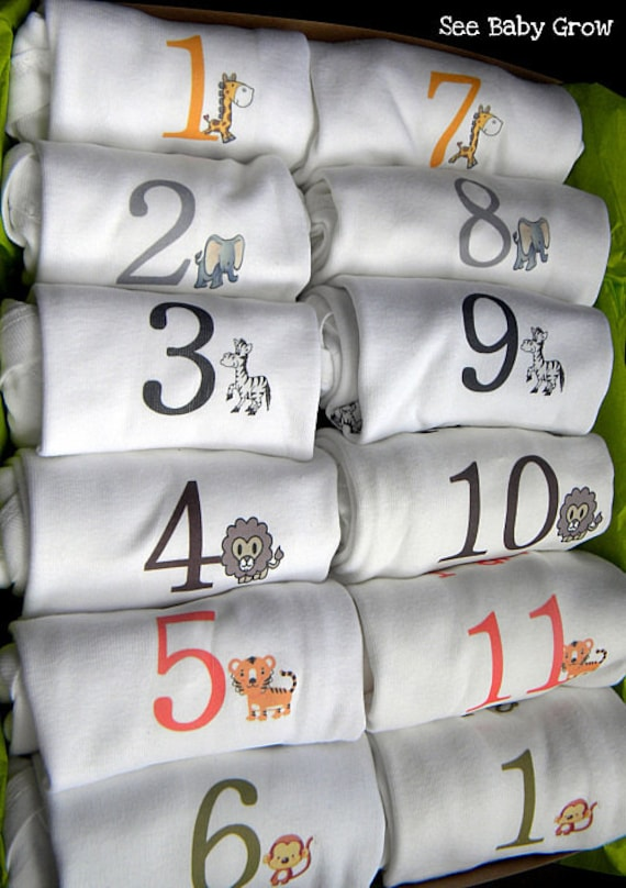 Set of 12 Monthly Bodysuits  SAFARI ANIMALS (Original by See Baby Grow)