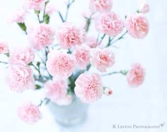Flower Photography - Pink Carnations Photo - Flowers - Carnations - Cottage Decor - Fine Art Photography Print - Pink White Home Decor