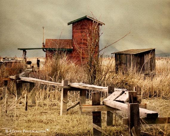 Washington Landscape Photography - Cabin Photograph - Landscape Photograph - Fine Art Photography Print - Rustic - Gold Tan Brown Home Decor