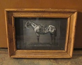 LONE HORSE PENCiL DRAWiNG FRAMED MAttED PRiNt